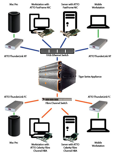 Tiger Series Shared Storage | ATTO